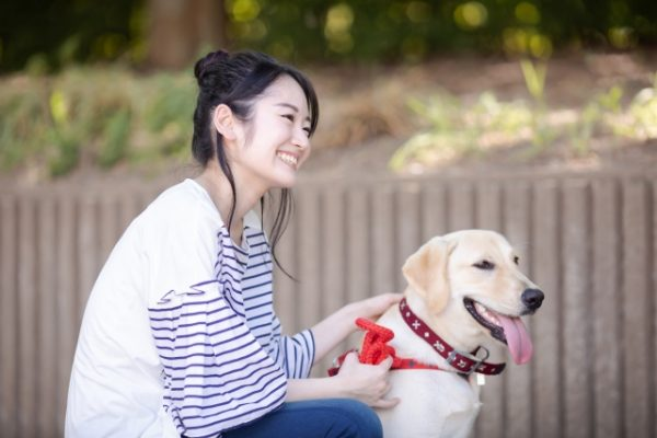 森田誠さんの犬のしつけ方法とは?本やDVDの評判・口コミをチェック!